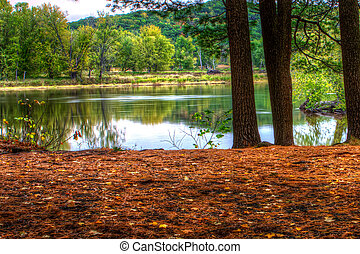 An HDR landscape of a forest and pond.