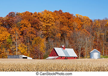 Farm and Autumn Hillside - Farm land with a crop of corn and...