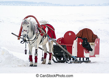 The horse harnessed to a sledge in