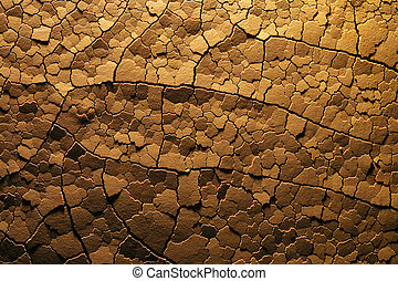 Dry cracked desert