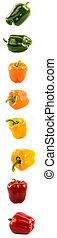 Sweet bell pepper set of four different colors and foreshortenings isolated over a white background