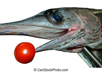 Swordfish - Detail of fresh swordfish head with tomato...