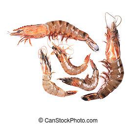 Five raw shrimps with different size Isolated on a white...