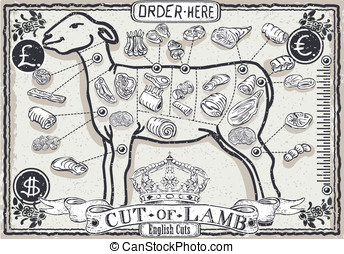 Cut of Lamb on Vintage Page - Detailed illustration of a Cut...