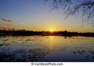Sonnenuntergang am Moor - Sonnenuntergang spiegelt sich auf...