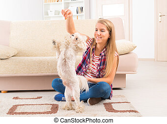 Beautiful young woman training her dog - Beautiful young...