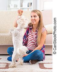 Beautiful young woman training her dog - Beautiful young...