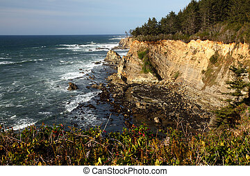 Oregon coast portrait - Cape Arago State Park and the...