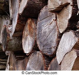 choppeed wood in a meadow in la spezia