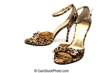 élégant, femme, chaussures, isolé,...