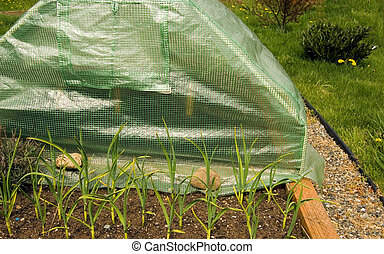 Mini Greenhouse of Gardenergardening, garden, equipment,...