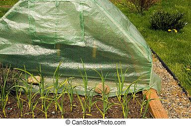 Mini Greenhouse of Gardenergardening, garden, equipment,...
