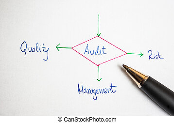 Outcomes of performing an audit