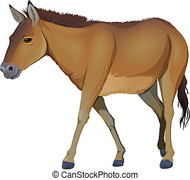 A brown horse - Illustration of a brown horse on a white...