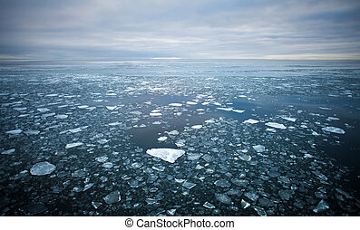 drift ice in Baltic sea