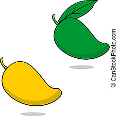 Mango - illustration of a ripe and unripe Philippine mango