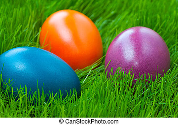 Easter eggs on grass - Close-up of colored Easter eggs on...