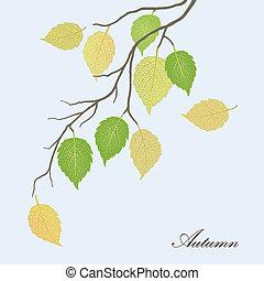 Beautiful illustration of leaves - Beautiful illustration of...