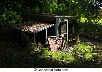 Old shack - An abandoned shack in a thick wooded forest is...