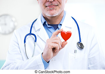Doctor with heart - Doctor holding an heart, cardiologist...