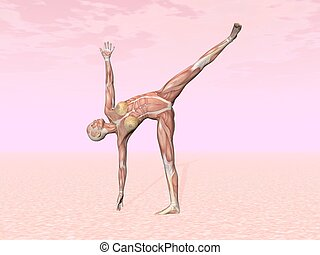 Half moon yoga pose for woman with muscle visible in pink...