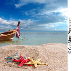starfish on the beach in Thailand - Starfish on the beach in...