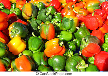 Multicolored Bell Peppers at Farmer's Market