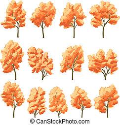 Deciduous trees in autumn. - Set of vector deciduous trees...