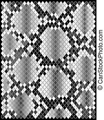 Skin of snake - Illustration of gray skin of snake, vector