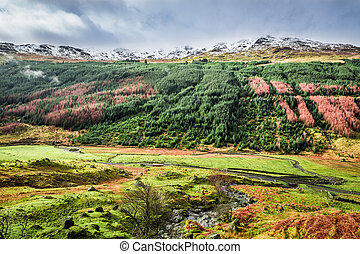 Autumn valley in the mountains, Scotland