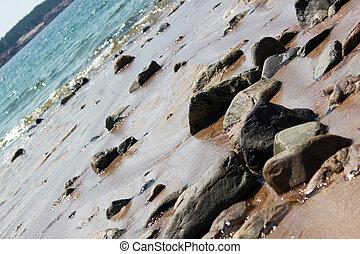 beach in Acadia national park