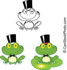 Smiling Groom Frog Set Collection