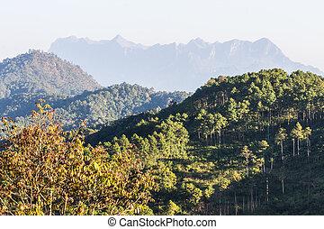 Doi Luang Chiang Dao, View Form Wianghaeng Chiangmai...