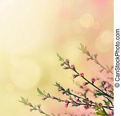 Flower buds - Flower spring background. Floral buds on pink....