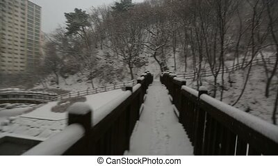 Snowy Korean Mountains Glide Cam - POV glidecam shot walking...