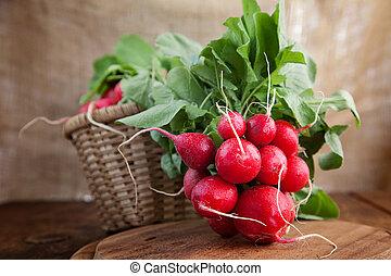 Fresh radish - Vegetable background. Fresh radish on wood