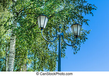 dual lamp - Dual lights in the park against a tree