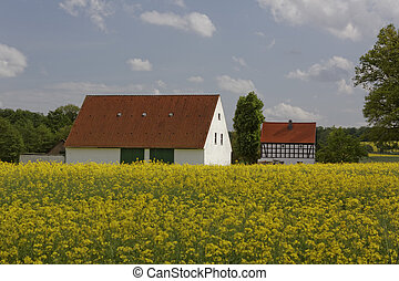 Farm in May with rape field, German - Bauernhof mit Rapsfeld...