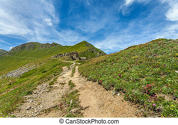 Footpath among hillsides in Alps.