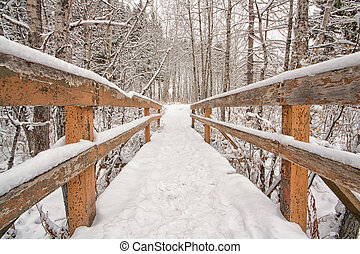 Snow Covered Bridge - Head on view of a snow covered bridge...