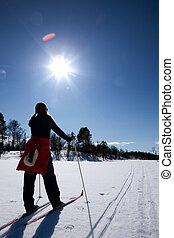 Cross Country Skiing - A woman in a winter landscape cross...
