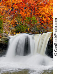 Autumn Waterfall - Whitewater plunges over a limestone ledge...