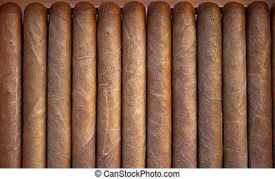 Cigars Churchill size - Dominican cigars in a humidor...