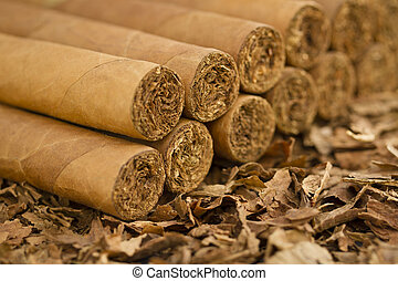 Cigars on Tobacco - A macro shot of cigars on tobacco These...