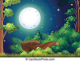 A green forest and a bright fullmoon - Illustration of a...