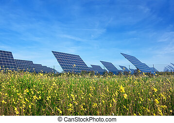 Station solar panels on a beautiful green lawn. For the...