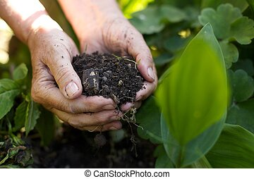Old woman with handful of soil in garden - Closeup image of...