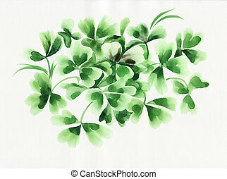 Irish clover leaves - Composition of green irish clover and...