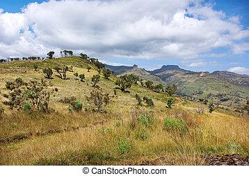 Landscape in Mount Elgon National Park, Kenya