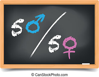 Blackboard Gender Equality - detailed illustration of a...